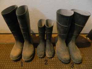 3 Boots