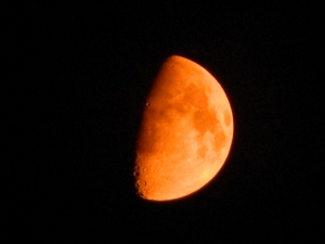 A Lunar Smoke Eclipse?... This photo was taken August 24th a full month before the last of the tetrad blood moons of 2014-15. The rusty, red, orange color is caused by the smoke polluting the night sky from the various fires throughout the Northwest.