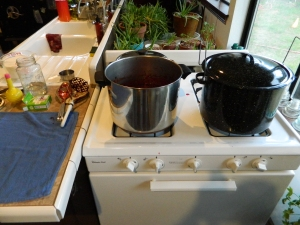 Stock pot boil, toil, and trouble... Krista processed two batches of berries into jam. Though the seeds are noticeable, the jam is sweet and delightful. I understand why people make this into a crisp topped with vanilla ice cream.