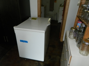 Out with the not so old... Our Sundanzer refrigerator is about to me moved out of the house and into storage until I can build a space for the backup freezer conversion.