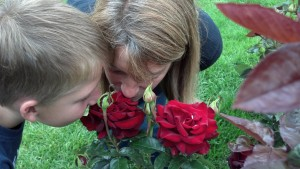 Taking time to stop and smell the roses... The family enjoys the rose garden at Manito Park in Spokane, Washington.