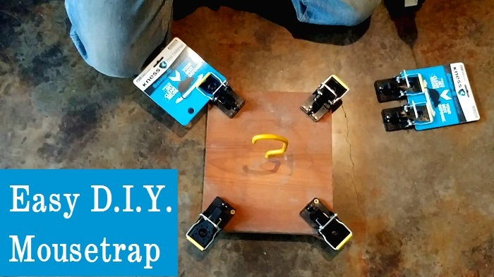 Easy Do-it-Yourself Mousetrap (Very Effective)